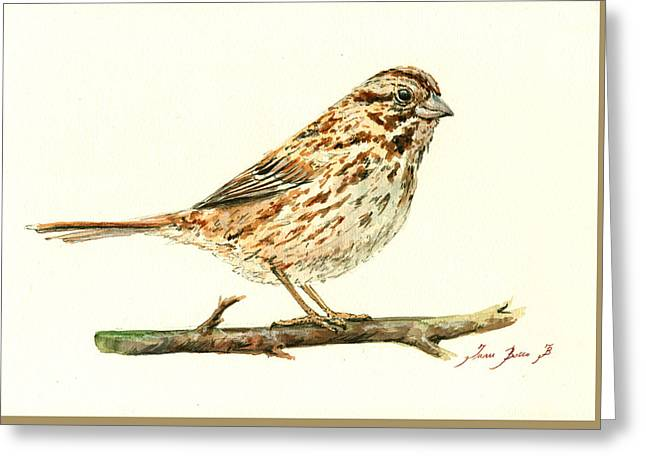 Song Sparrow Greeting Card by Juan  Bosco