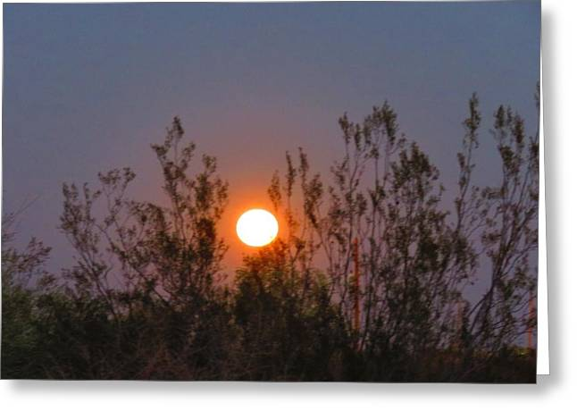 Sonoran Desert Harvest Moon Greeting Card