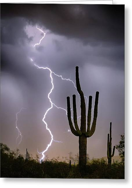 Greeting Card featuring the photograph Sonoran Desert Monsoon Storming by James BO Insogna