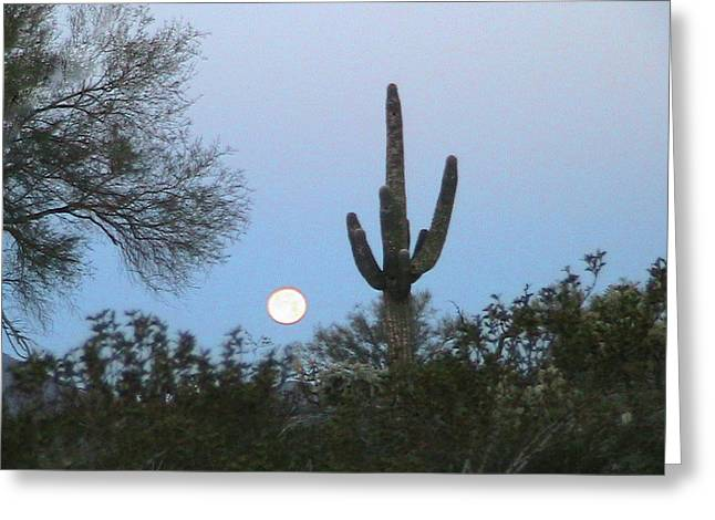 Sonoran Desert Moonset Greeting Card