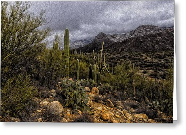 Greeting Card featuring the photograph Sonoran Winter No.3 by Mark Myhaver