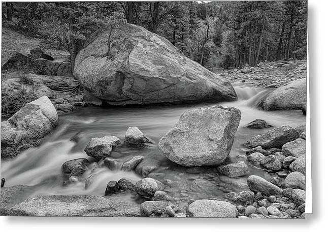 Soothing Colorado Monochrome Wilderness Greeting Card by James BO Insogna