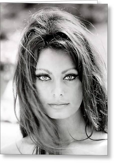 Sophia Loren Greeting Card by Georgia Fowler