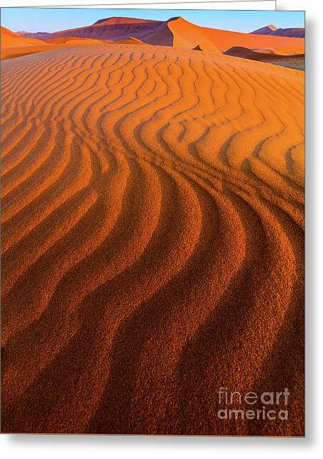 Sossusvlei Curves Greeting Card by Inge Johnsson