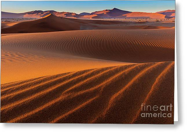 Sossusvlei Sand Dunes Greeting Card by Inge Johnsson
