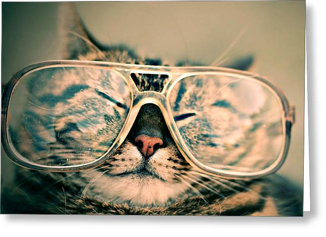 Sosy Cat With Glasses Greeting Card by Fbmovercrafts