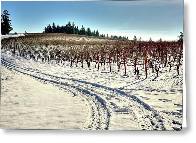 Soter Vineyard Winter Greeting Card