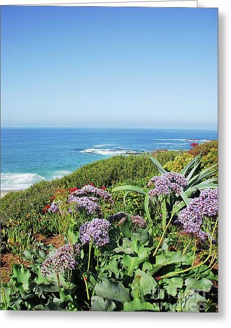 Sothern California Morning Greeting Card by Timothy OLeary