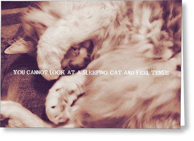 Sound Asleep Quote Greeting Card by JAMART Photography