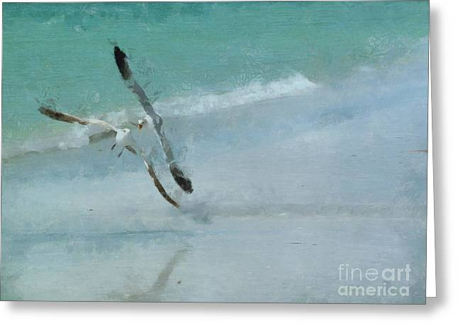 Sound Of Seagulls Greeting Card by Claire Bull