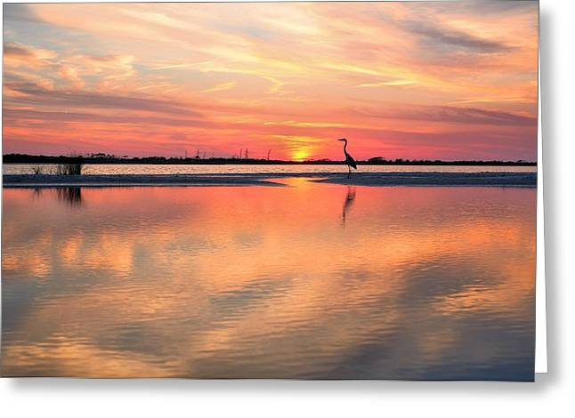 Soundside Sunset Greeting Card by JC Findley