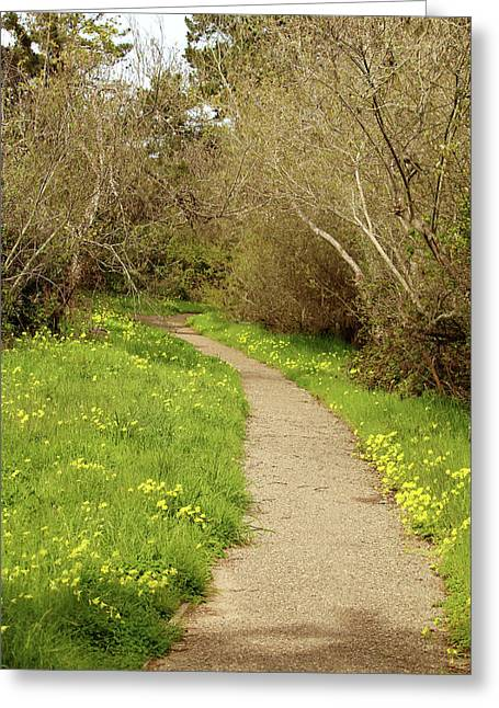 Greeting Card featuring the photograph Sour Grass Trail by Art Block Collections