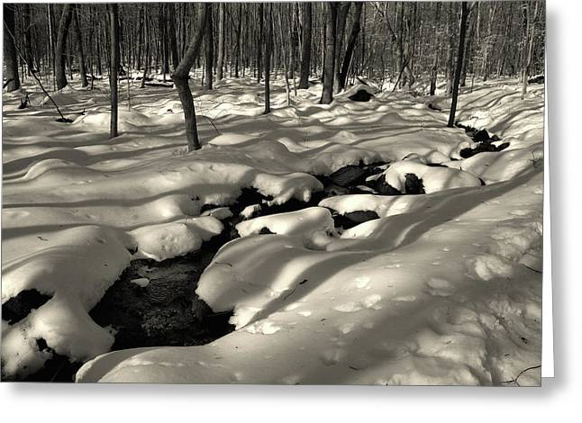 Greeting Card featuring the photograph Sourland Mountains 4 by Steven Richman