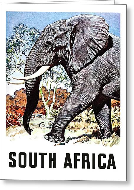 South Africa, Safari, Elephant Greeting Card by Long Shot