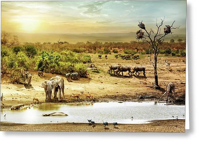 South African Safari Wildlife Fantasy Scene Greeting Card