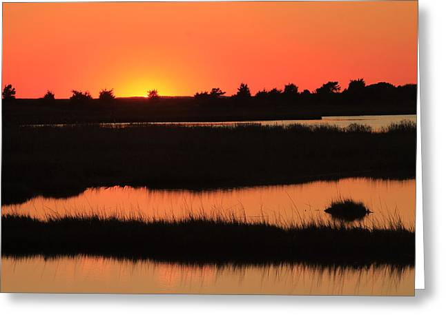 South Cape Beach Marshes At Sunset Greeting Card