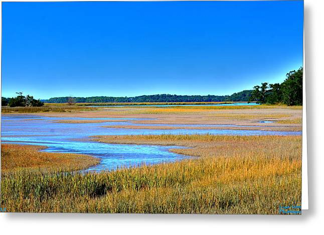 South Carolina Lowcountry H D R Greeting Card