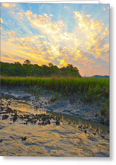 Greeting Card featuring the photograph South Carolina Summer Sunrise by Margaret Palmer