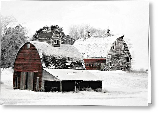 Barn Door Digital Greeting Cards - South Dakota Farm Greeting Card by Julie Hamilton