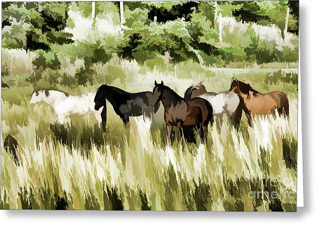 South Dakota Herd Of Horses Greeting Card by Wilma Birdwell