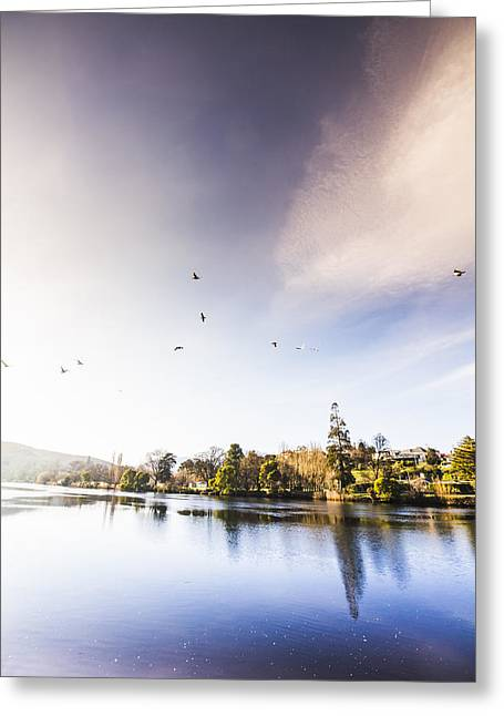 Greeting Card featuring the photograph South-east Tasmania River Landscape by Jorgo Photography - Wall Art Gallery