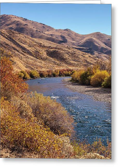 Greeting Card featuring the photograph South Fork In Autumn by Mark Mille