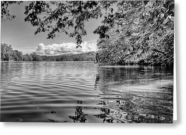 South Fork Shenandoah River With Heron Greeting Card by Lara Ellis