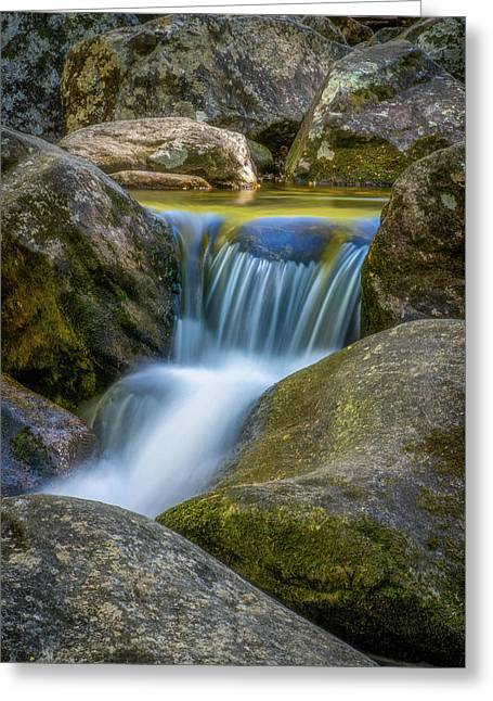 Greeting Card featuring the photograph South Mtn State Park-1 by Joye Ardyn Durham