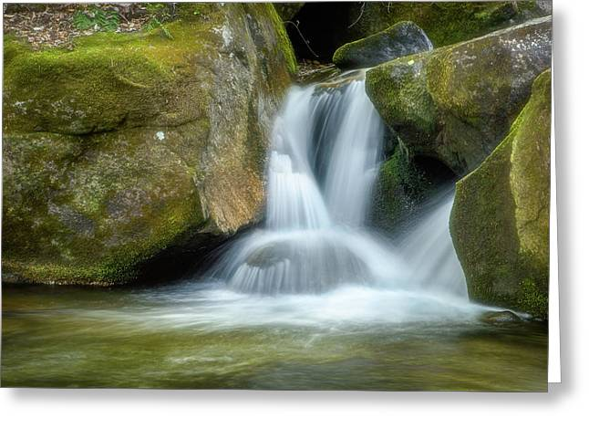 Greeting Card featuring the photograph South Mtn State Park 2 by Joye Ardyn Durham