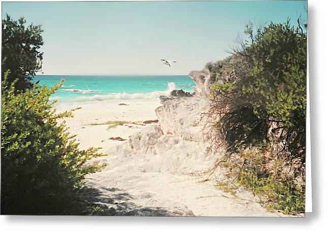 South Shore Bermuda Greeting Card
