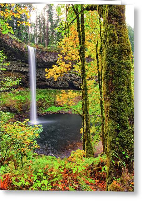 South Silver Falls Greeting Card
