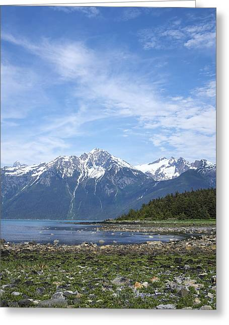 Southeast Alaskan Summer Greeting Card