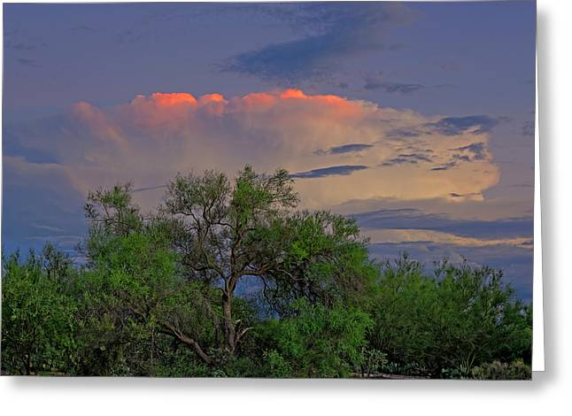 Greeting Card featuring the photograph Southeast Of Sunset H38 by Mark Myhaver