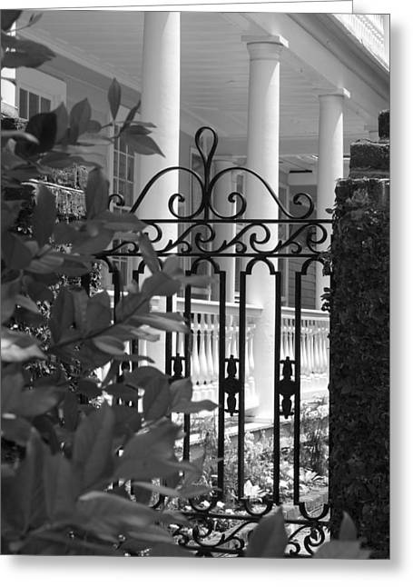 Southern Charm Greeting Card by Debbie Karnes