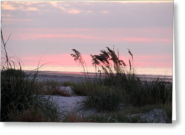 Southern Dunes Greeting Card