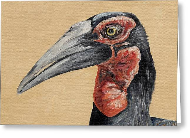 Southern Ground Hornbill Greeting Card by Alexander Fund