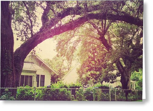 Southern Home #house  #coastalbeauty Greeting Card