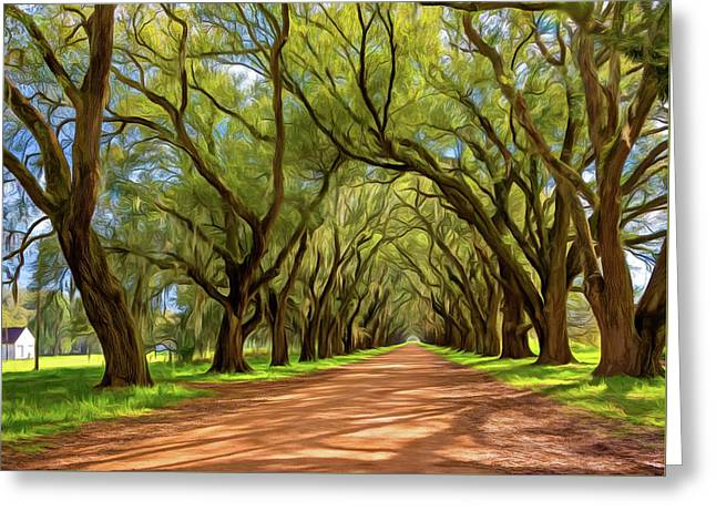 Southern Lane 3 - Paint Greeting Card by Steve Harrington