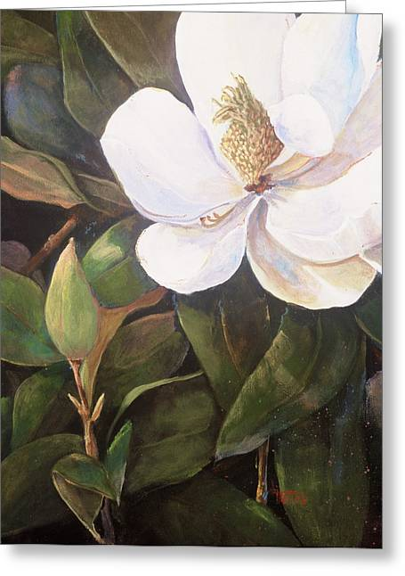 Southern Magnolia Greeting Card by Jimmie Trotter