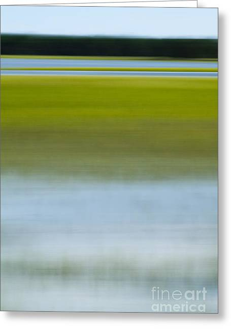 Southern Marsh Motion Greeting Card by Dustin K Ryan