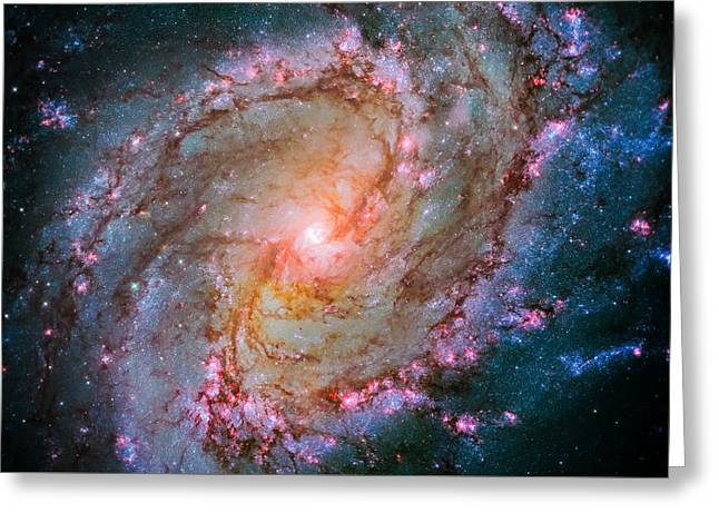 Southern Pinwheel Galaxy - Messier 83 -  Greeting Card by Jennifer Rondinelli Reilly - Fine Art Photography