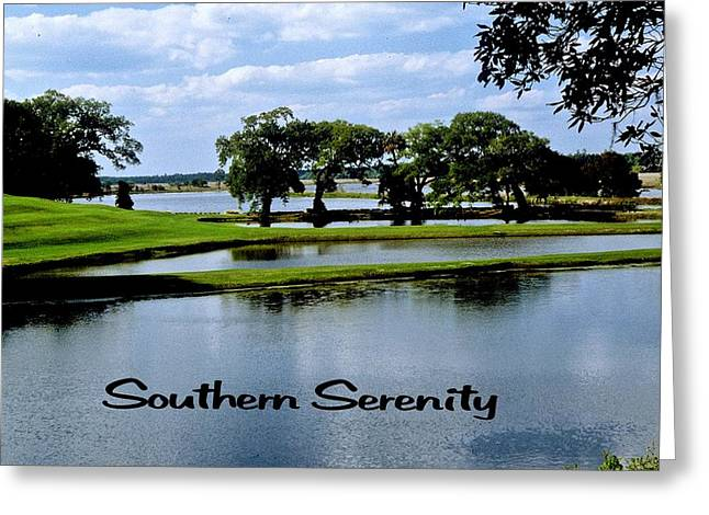 Southern Serenity Greeting Card by Gary Wonning