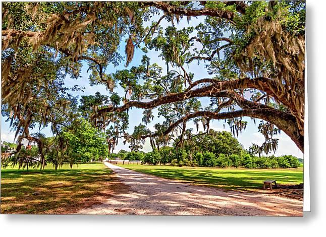 Southern Serenity Greeting Card