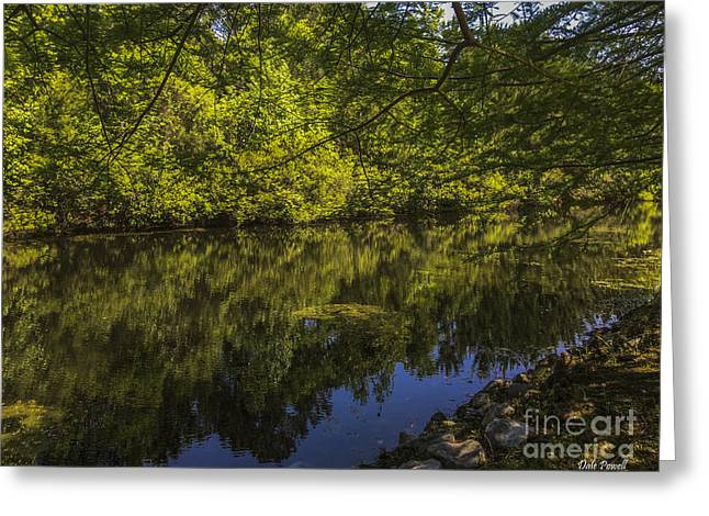 Southern Still Waters Greeting Card by Dale Powell