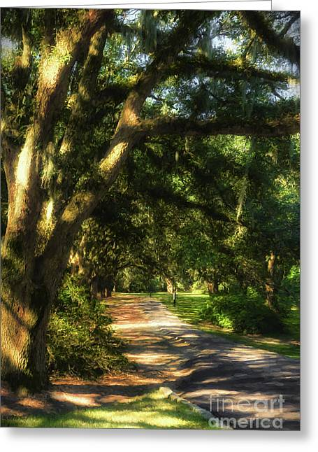 Southern Sunshine Greeting Card