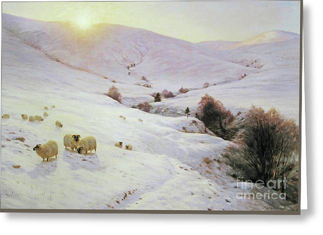 Southland Hills. Greeting Card