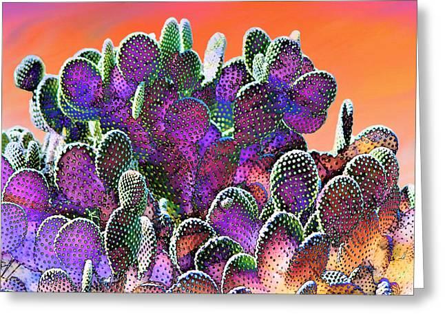 Southwest Desert Cactus Greeting Card