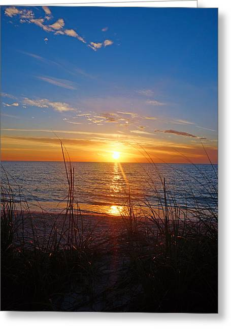 Southwest Florida Sunset Greeting Card