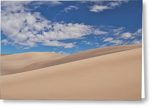 Southwest Sands Of Colorado Greeting Card