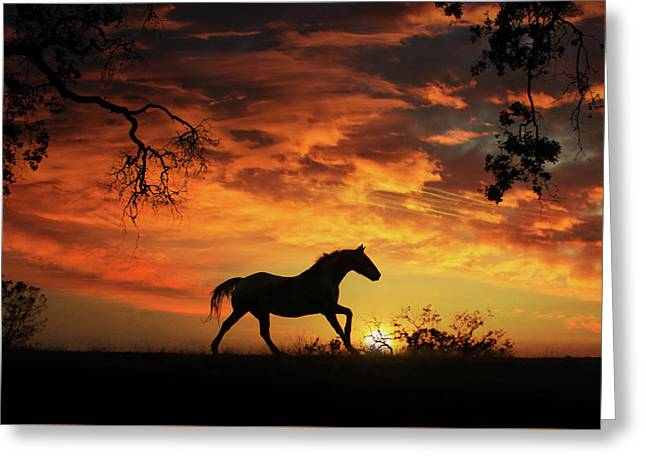 Southwestern Sunset Greeting Card by Stephanie Laird